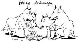 Krauze_wilcy_ubolewaja
